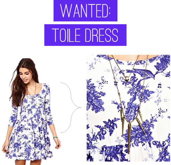 wanted_toiledress