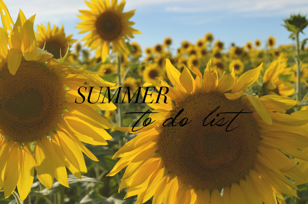 summer to do list 2