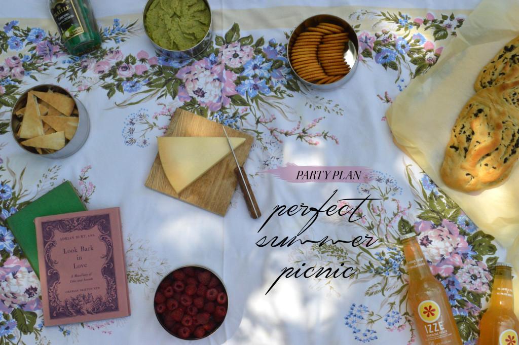 party plan - picnic